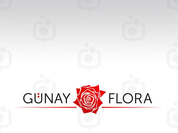 Gunay2