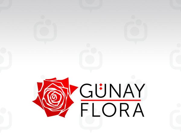 Gunay3