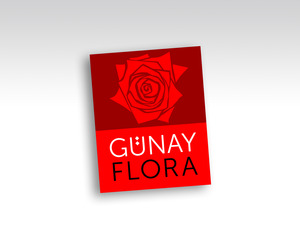Gunay4