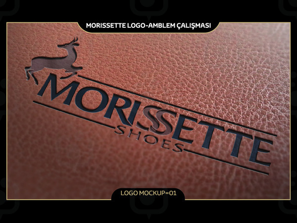 Morissette mockup 01