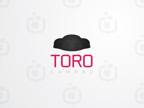 Toro2