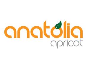 Anatolia apricot logo
