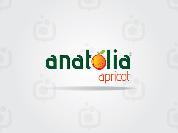 Anatolia 01