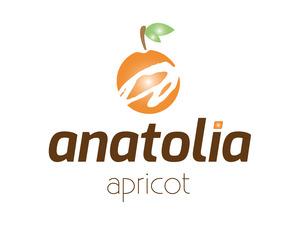 Anatolia logo2