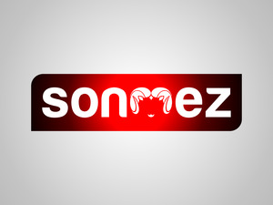 S nmez 2 01