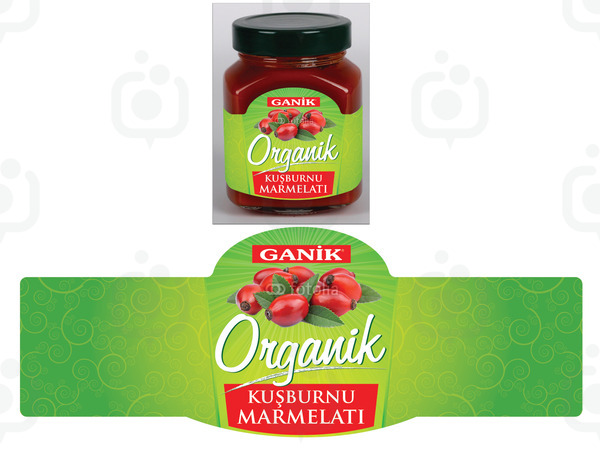 Ganik1
