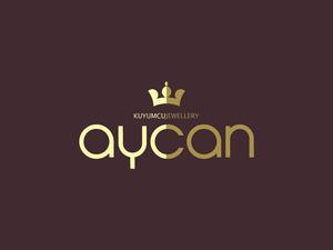 Aycanlogo1