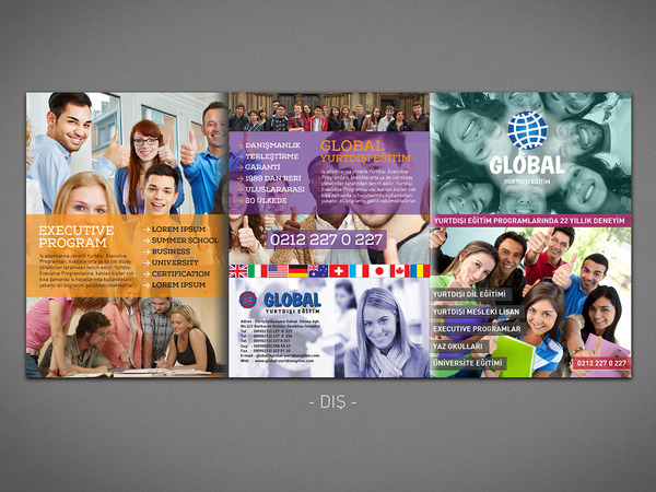 Global brochure 1 dis