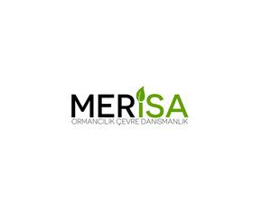 Merisa2