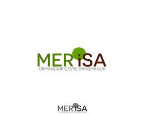 Merisa4