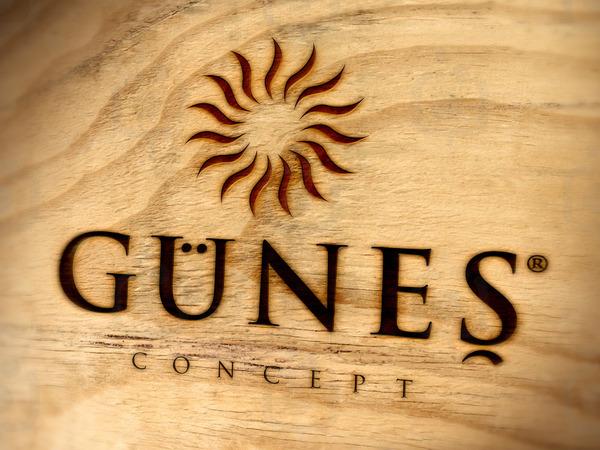 Gunes 2
