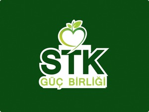 Stk logo 2 01