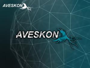 Aveskon3