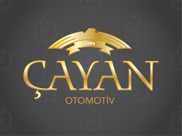 Cayan oto 02