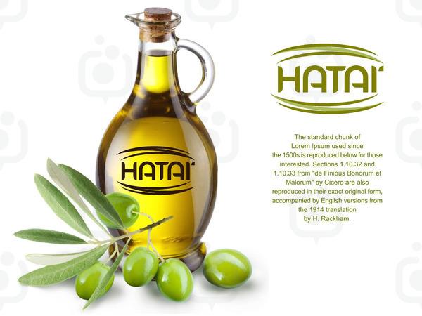 Hatailogo1