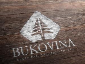 Bukovina3d2