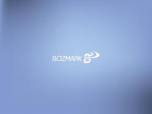 Bozmark logo 8