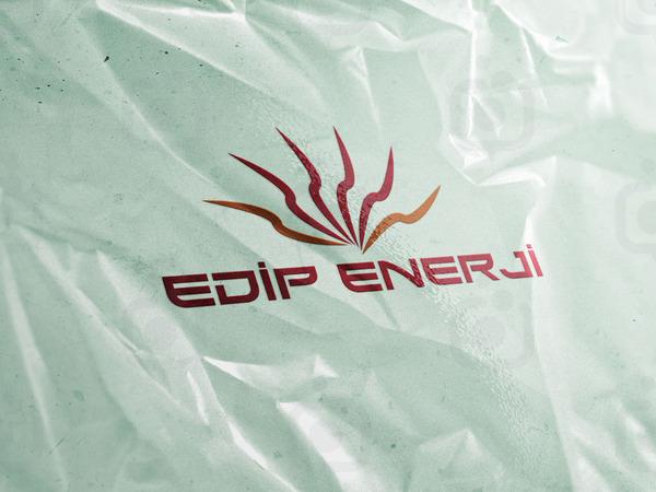 Edip enerji 2