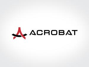 Acrobat 03