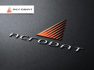 Acrobat 06