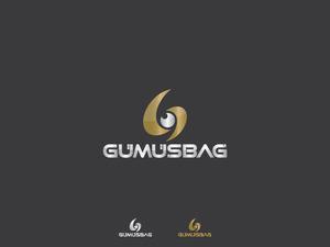 Gumusbaglogo3