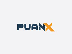 Puanx2 3