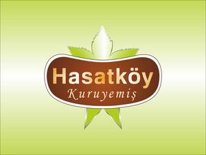 Hasatk y3