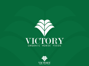 Victory2