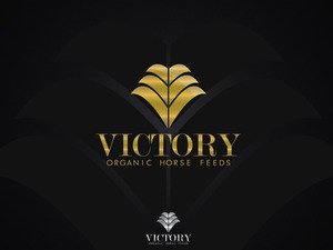 Victory3