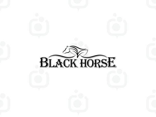 Black horse 01