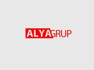Alya grup logo 2