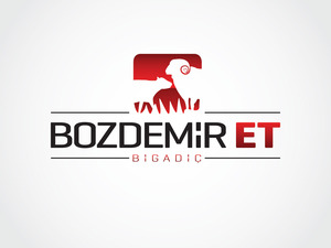 Bozdemir et logo 2