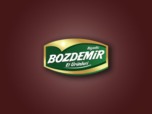 Bozdemir2