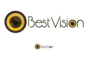 Sari best vision 01