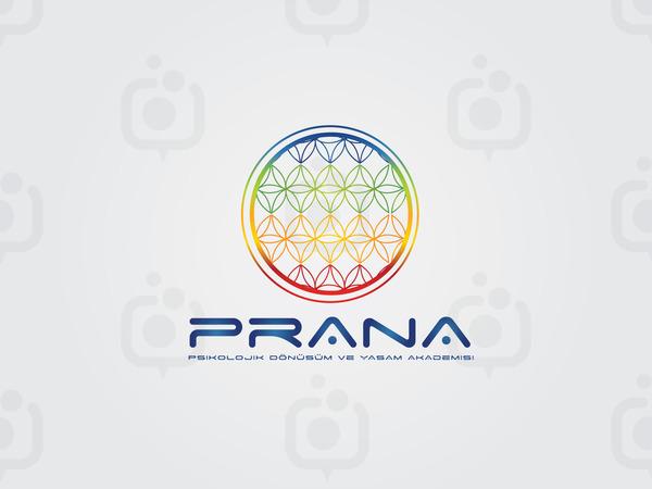 Prana3
