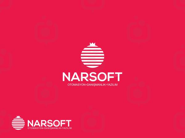 Narsoft1
