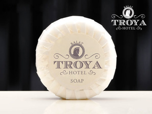 Troya1