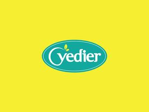 Yedier