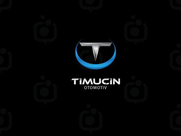 Timu in3