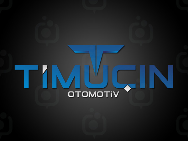 Timu in logo2