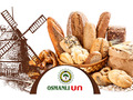 Proje#28511 - Gıda Takvim Tasarımı  -thumbnail #7