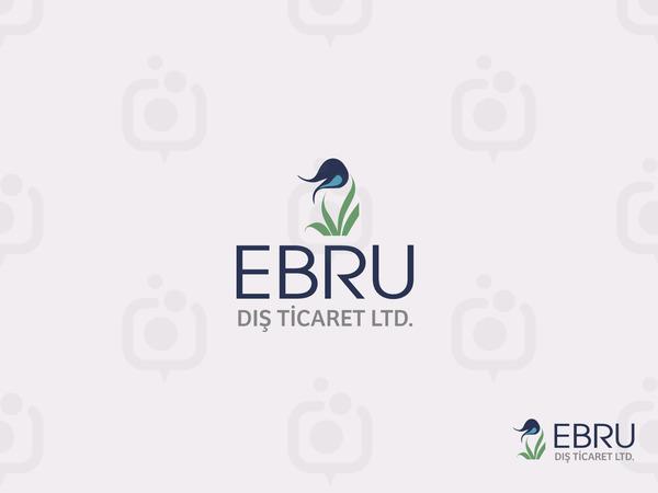 Ebru2