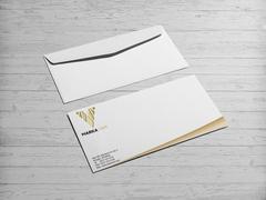 V Logo Zarf Tasarımı