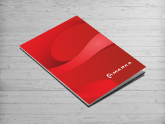 Küre İçindeki S harfi Logo Dosya Tasarımı