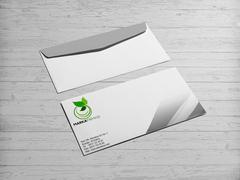 Yaprak Marka Logo Zarf Tasarımı