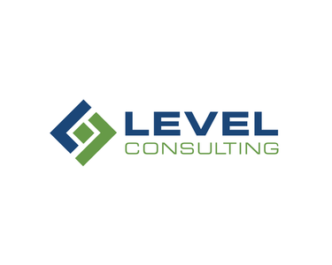 Level consulting final