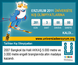 2011 universiade widget