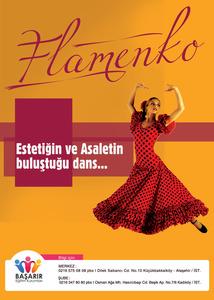 Basarir flamenko
