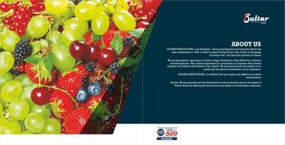 Sultar yas meyve katalog 20x20  talyanca  c sayfa 2 3