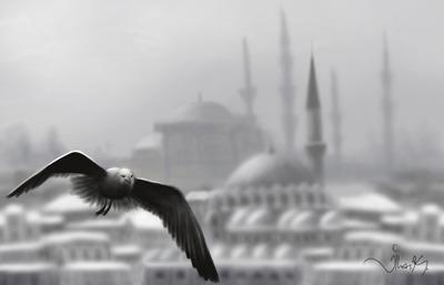 Istanbul65576 copy